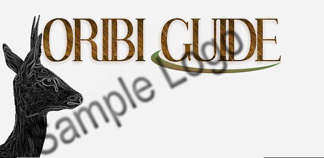 Logo Design Sample1