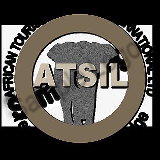 Logo Design Sample6